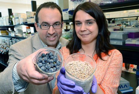 Wine researchers Cédric Saucier, associate professor and head of Chemistry, and Adéline Delcambre, a post-doctoral fellow, have discovered 14 previously unknown compounds in red wine and grape seeds.