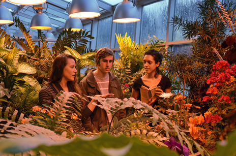Creative writing students Kate Ball and Hayden McIntosh discuss the Plant Intelligence Project with instructor Sonnet L'Abbé (right).