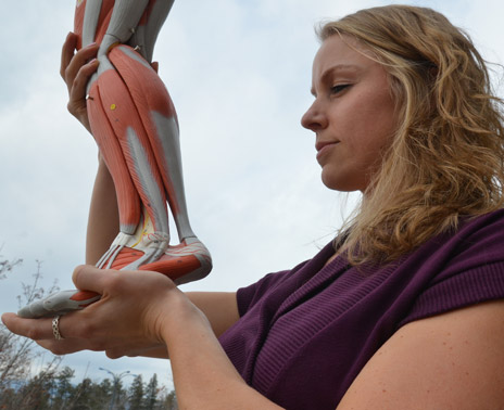 Carey Simpson inspects the Achilles tendon and calf muscle of an anatomical model.