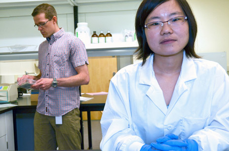 Post-doctoral fellow Caroline Wan in the lab with her faculty supervisor Jonathan Little, associate professor in the School of Health and Exercise Sciences at UBC's Okanagan campus. Wan has received an $80,000 award to help with her Alzheimer's disease research.