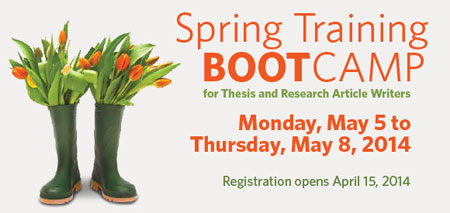 Spring boot camp graphic