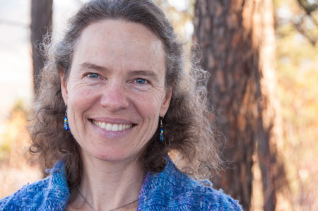 Associate Professor of Mathematics Rebecca Tyson used computer modelling to determine pheromone baiting isn't the best solution to control the mountain pine beetle.