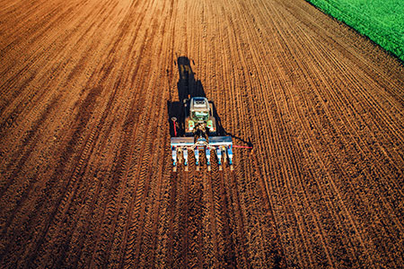 A multi-year study on four different crop fields found there could be environmental consequences of adding bio-fertilizers to soil.