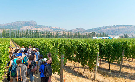 Students get a first-hand look at some of the issues facing the wine industry in B.C., which, according to Wines of British Columbia, contributes $2.8 billion annually to the B.C. economy.