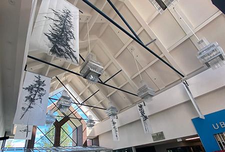 Understory by Jane Everett, installation shot