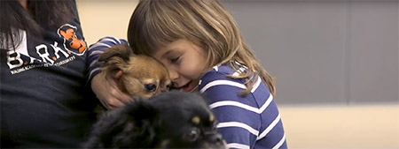 A new School of Education study explored how children reacted while participating in a social skill-training program with therapy dogs.